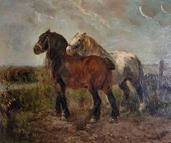 belga caballo
